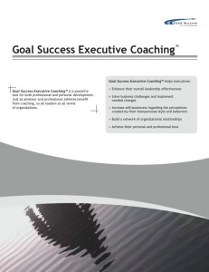 Programs-Executive-Coaching