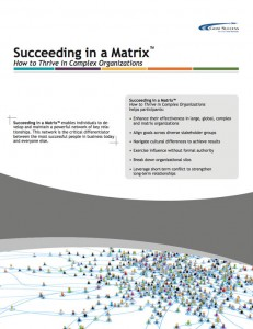 brochure-succeeding-in-matrix